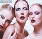 טרנד המחוקות במגזין המקצועי פרופשיין